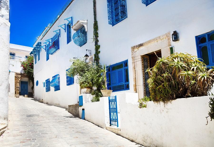 Блакитне місто Сіді-бу-Саїд